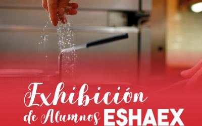 Exhibición de Alumnos de la Escuela ESHAEX