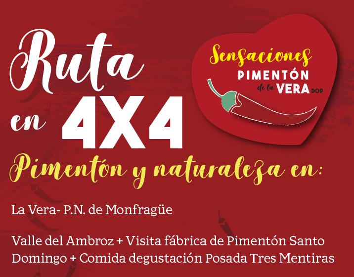 RUTA EN 4X4